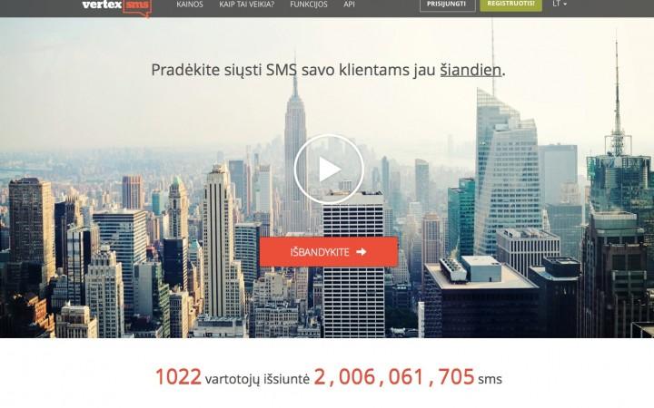 Internetines svetaines pagrindinis puslapis kompiuteryje